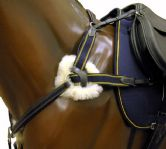 'Champion' 5 Point Breastplate