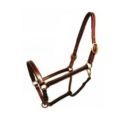 """Champion"" Leather Halter"