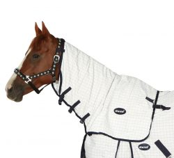 Ascot Ripstop Cotton Neck Rug