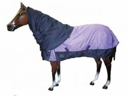 Ascot 600D Neck Rug - Filled
